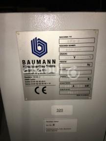 Baumann BPW 3 Picture 3